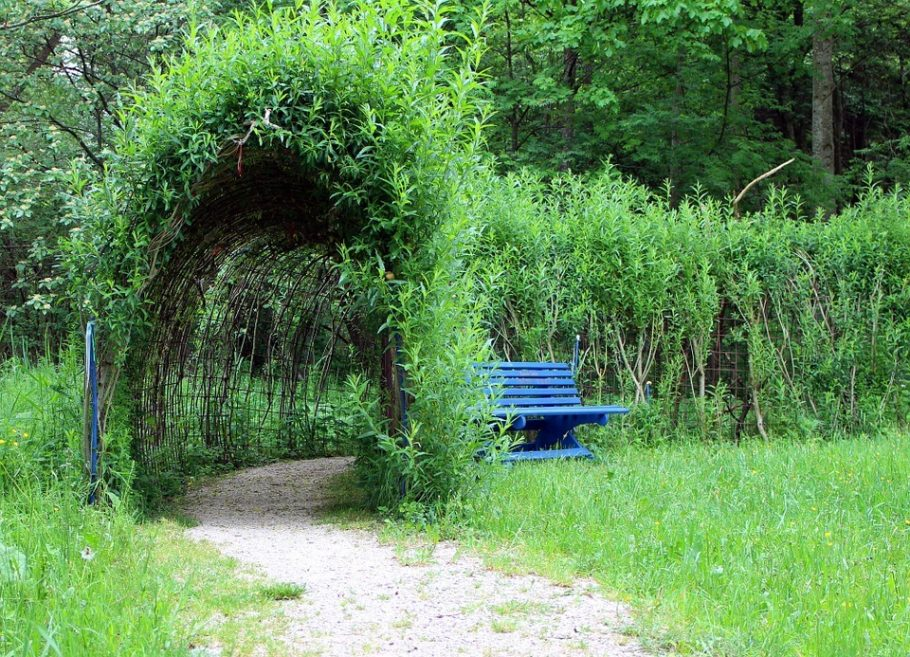 A tunnel made from planted material