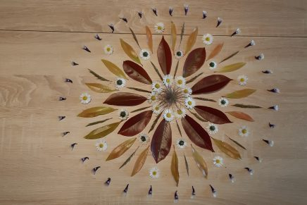 Mandala made from flowers and leaves