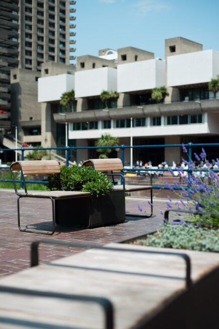 Benches with planters in between them on a pedestrianised stree