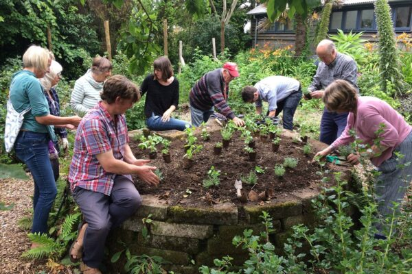 Group gardening in Potager gardens
