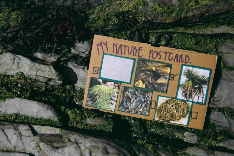 A nature postcard carries pictures of nature