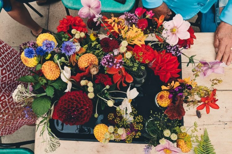 A colourful collection of flowers