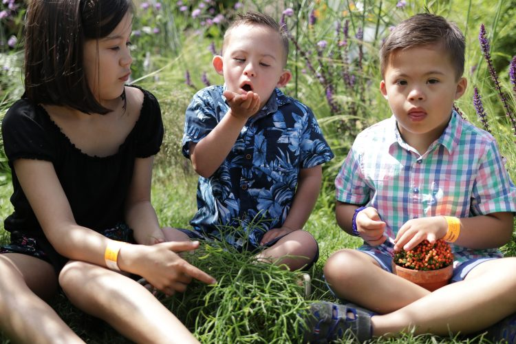 Children sitting in a garden and exploring the plants