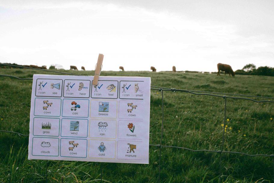A Widgit sensory mapping sheet pinned on a fence