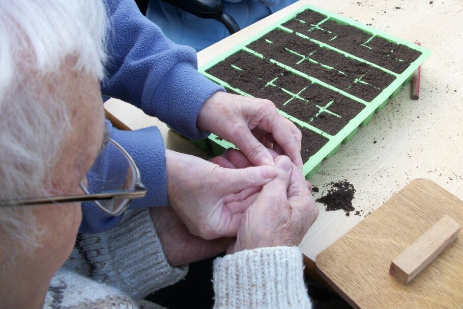 Older and younger hands sowing seeds together